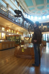 A dinosaur in the Redpath Museum
