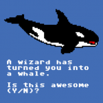 A wizard has turned you into a whale