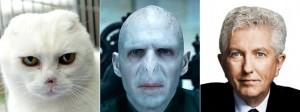 Duceppe, Voldemort, cat