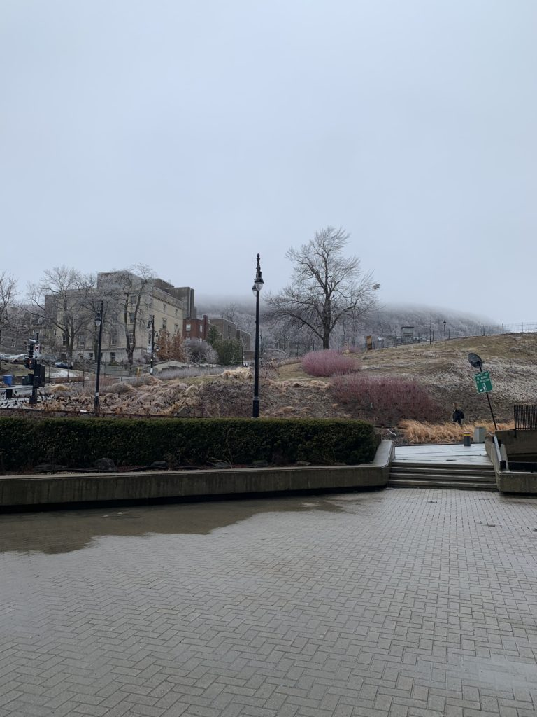 2019 April 8; icy and foggy