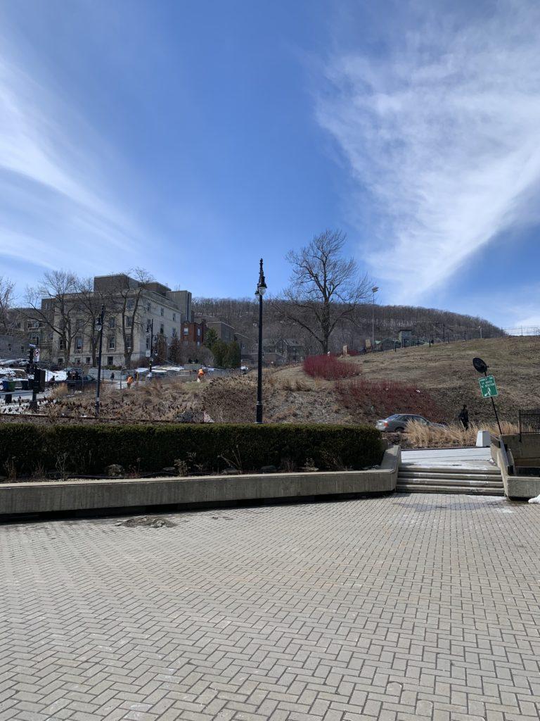 2019 April 11, sunny